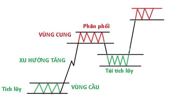 Tất cả các giai đoạn của một thị trường