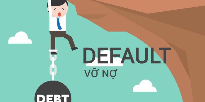 Vỡ nợ là trường hợp bên vay không đủ khả năng hoàn trả tài sản